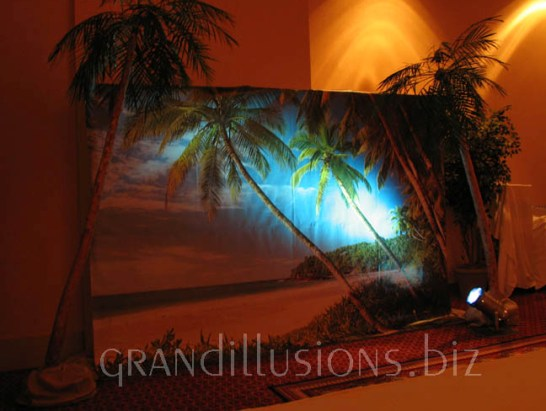 tropical backdrop lighted